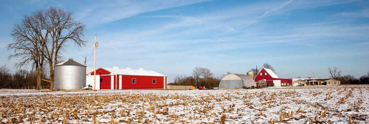 Winter at Red Barn Farm